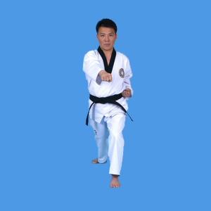 Fitkd f d ration ivoirienne de taekwondo site officiel abidjan c te d 39 ivoire - Coup de poing dans le dos ...