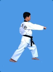 taegeug-sam-jang-13