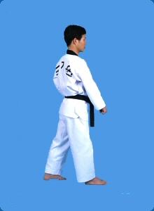 taegeug-sam-jang-22