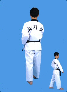 taegeug-sam-jang-28