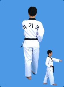 taegeug-sam-jang-29