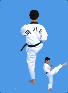 taegeug-sam-jang-31
